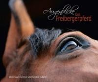 AUGENBLICKE – DAS FREIBERGERPFERD